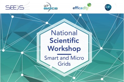 National Scientific Workshop Micro and Smart Grid